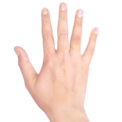 Hand Light Skin Image